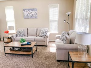 Living Room Update – Our New Couch & More